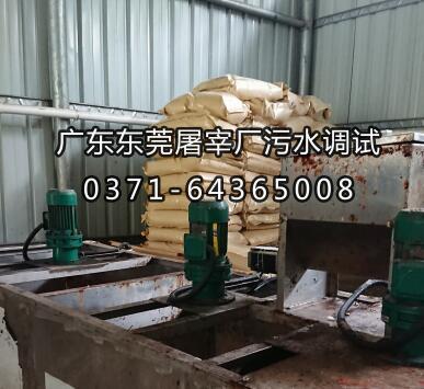 广东东莞屠宰厂聚丙烯酰胺调试